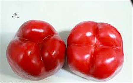 Pimientos-rojos
